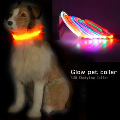 2017 Popular USB Luminous Dog Pet LED Collar Flashing Light USB Charging Collars Flash Night Safety Pet Supplies Chain Necklace #Affiliate