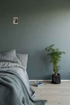 Lady 6352 Evening Green Lady 6352 Evening Green The post Lady 6352 Evening Green appeared first on Slaapkamer ideeën. Bedroom Color Schemes, Bedroom Colors, Home Bedroom, Bedroom Decor, Bedroom Rustic, Bedroom Ideas, Bed With Wardrobe, Bedroom Orange, Bohemian Living