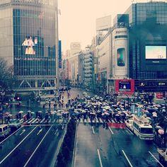 shibuya -- my favourite place *_*