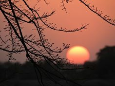 Sunset in Sawarda, India G Adventures, National Geographic, Journey, India, Celestial, Photo And Video, Sunset, Outdoor, Sunsets