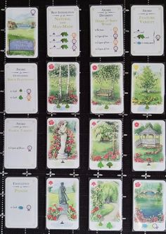 Solo 36 points - Village Green of the Year Game Card Design, Tabletop Games, Design Reference, Card Games, Green, Cards, Board Games, Maps, Playing Cards