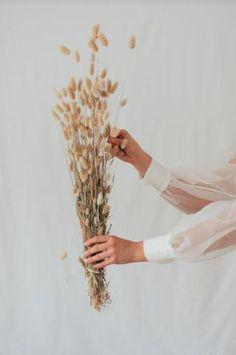 """Lieferzeit 3-5 Tage Lagures natur """"Bunny Tails""""Mit diesem hübschen Lagures Gräser Bündel in einem schönen... Bunny Tail, Shop, Things To Do, Decorating, Nature, Crafting, Store"""
