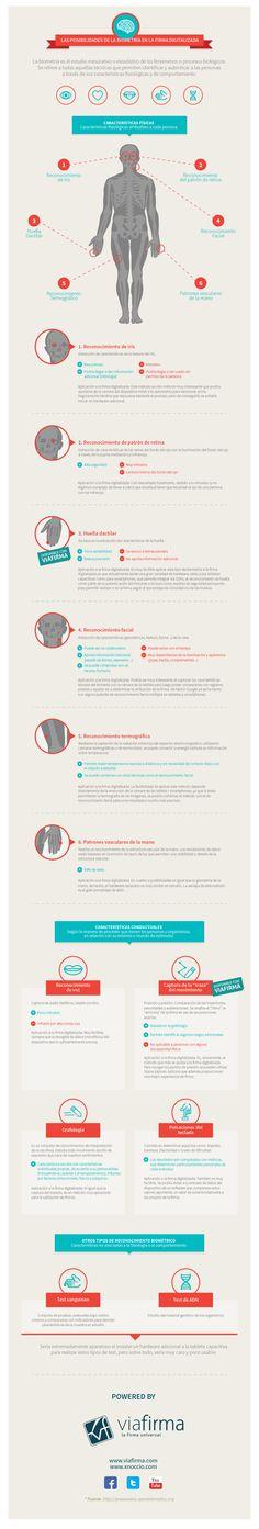 Las posibilidades de la biometría en la firma digital vía: www.viafirma.com #infografia #infographic #MUN2tics