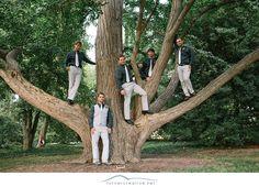 Wedding at Missouri Botanical Garden - Turner Creative Photography    good tree