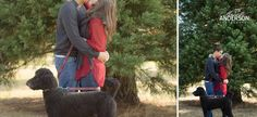 Couple holiday photos with dog