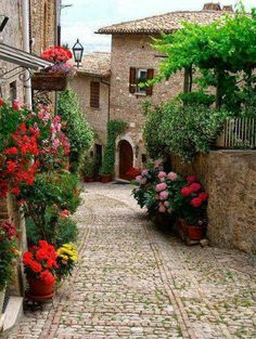 Cobblestone Street, Montefalco, Italy photo via Paula Perugia Umbria Places Around The World, Oh The Places You'll Go, Places To Travel, Around The Worlds, Travel Destinations, Wonderful Places, Beautiful Places, Beautiful Streets, Amazing Places