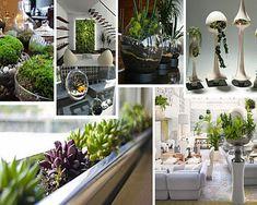 Modern Indoor Gardening ideas Design to Beautify Your Space Wallpaper