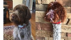 Excited to share this item from my shop: Wirehaired Pointing Griffon Driver cover made to order Wirehaired Pointing Griffon, Golf Club Covers, Big Brown, Dad Birthday, Pet Names, Taylormade, Pictures Of You, Golf Clubs