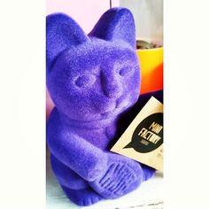 LUCKY CAT ATERCIOPELADO plastico (Mueve el brazo con pila) by Mini Factory!  Buscanos en www.facebook.com/minifactorybuditas o @minifactorybuditas en Instagram
