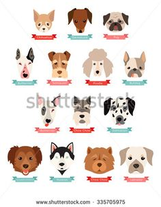 Dog breeds collection with ribbon and name, vector flat illustrations. Popular dogs breeds, card, dogs passport, game graphics. - stock vector