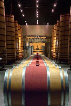Restored French oak uprights in the barrel room, Concannon Vineyard, Livermore Valley, CA