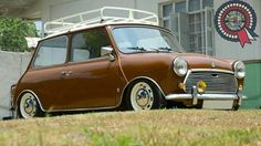 Mini | Lowered, Slammed
