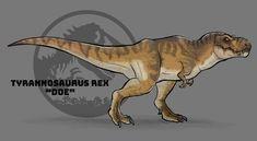 Jurassic Craft, T Rex Jurassic Park, Jurassic World Dinosaurs, Jurassic Park World, Dinosaur Drawing, Dinosaur Art, Cool Dinosaurs, Park Art, Fantasy Monster