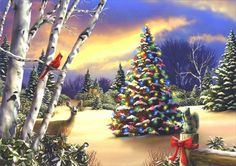 ★Pure Light★ - lovely, holidays, christmas tree, creative pre-made, attractions in dreams, deer, beautiful, white trees, xmas and new year, snow, greetings, pretty, sunrise, love four seasons, Christmas, cardinals, colors, winter holidays, light, winter