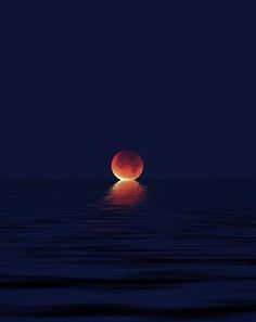 Moonlight - When Moon Kisses The Sea, Amazing