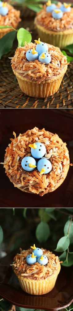 DIY Bird's Nest Cupcakes~~I hope you get a chance to make these cupcakes this spring and possibly even for Easter. They are sure to put a smile on the face of any lucky person who gets one..www.cookingclassy.com