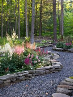 Astilbes in a woodland garden. There is no distinguishable pattern to the colours, but the random placement of plants work because the hues are complementary. This blends so well with the natural stone rock walls.