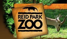 Reid Park Zoo - Tucson