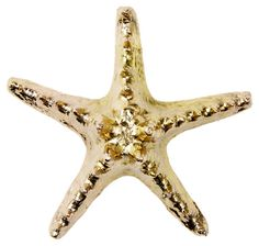 Gold-Plated Knobby Starfish | Finds Under $50 | One Kings Lane