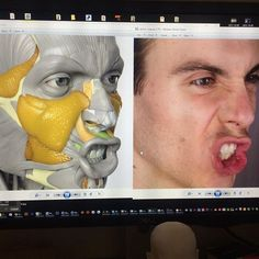 Exceptional Drawing The Human Figure Ideas. Staggering Drawing The Human Figure Ideas. Face Muscles Anatomy, Anatomy Head, Facial Anatomy, Anatomy Poses, Muscle Anatomy, Anatomy Study, Anatomy Art, Anatomy Reference, Human Face Drawing