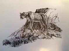 #sketch #art #mountainlion #blackandwhite #artist #originalart