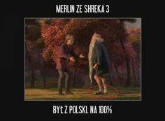 Best Memes, Funny Memes, Hilarious, Jokes, Polish Memes, Past Tens, Quality Memes, Shrek, Life Humor