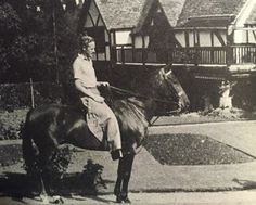 Leslie Howard at Stowe Maries, Dorking near Surrey, on one of his polo ponies Hollywood Men, Hollywood Stars, Classic Hollywood, Leslie Howard, Norma Shearer, London United Kingdom, Japanese Film, Home Movies, Home