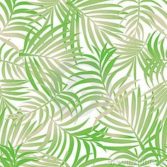 Palm leaves on a seamless pattern
