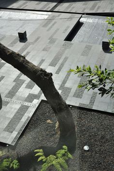 In Collaboration with Colonnier y Asociados.     Located in one of Mexico city's oldest neighborhoods; Coyoacán 1622 stands out as a different approach in co... Contemporary Landscape, Urban Landscape, Landscape Design, Garden Design, India Landscape, Japanese Landscape, Landscape Materials, Pavement Design, Paving Pattern