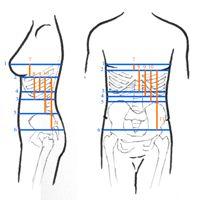 How to Measure for a Corset                      Maten nemen voor een corset patroon