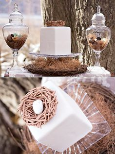 nest gender cake | and apothecary jars filled with treats nested cupcakes bird silhouette ...