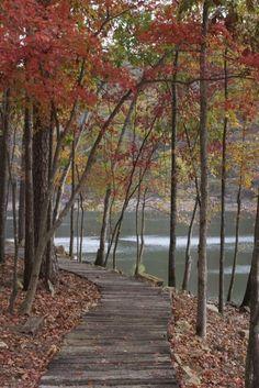 Walking trail around lake. srcfall4