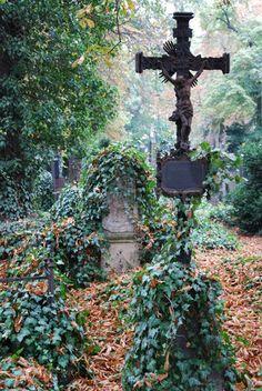 Old historic cemetery Olsany in Prague.