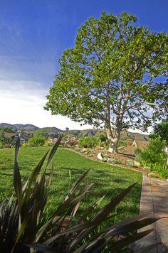 Gorgeous views of Ventura. By Scarlett's Landscape, Inc. http://scarlettslandscaping.com/