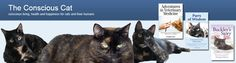 The Conscious Cat: Conscious Cat Sunday: How to Stop Worrying about Money...and more