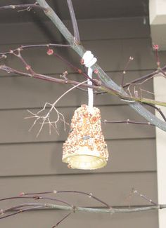 Easy bird feeders made with ice cream cones, peanut butter, and bird seed.  Thanks Suzi!