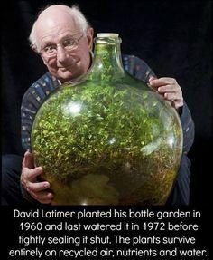 Ecosystem!