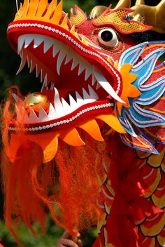 dragon dance....is a form of traditional dance and performance in chinese culture. The dance team mimics the supposed movements of this river spirit in sinuous, undulating manner. The movements in a performance traditionally symbolise historical roles of dragons demonstrating power and dignity