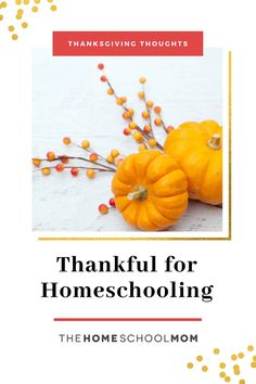 Thanksgiving is the perfect time to reflect on all the reasons to appreciate homeschooling. Read what our contributors are thankful for... Thanksgiving Traditions, Thanksgiving Activities, Family Traditions, Benefits Of Homeschooling, Character Qualities, Math Workbook, Menu Planning, Writing Prompts, I Am Awesome