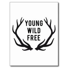 young, wild, free, text design with deer antlers post cards