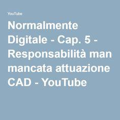 Normalmente Digitale - Cap. 5 - Responsabilità mancata attuazione CAD - YouTube