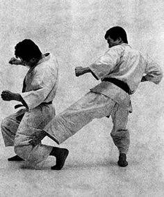 Karate kings