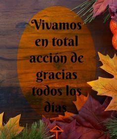 Gratitud Todos Los Dias