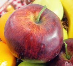 Quatro Estações » Frutas: 7 on 7 - Quatro Estações