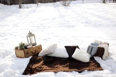 who says you can't have a picnic in the snow?!