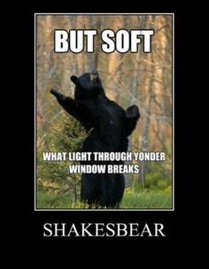 Shakesbear | Funny Pictures!