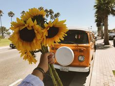 Find beauty in the small things Vw T3 Camper, Trippy, Plants Are Friends, Flower Aesthetic, Happy Colors, Mellow Yellow, My Sunshine, Pretty Flowers, Aesthetic Wallpapers