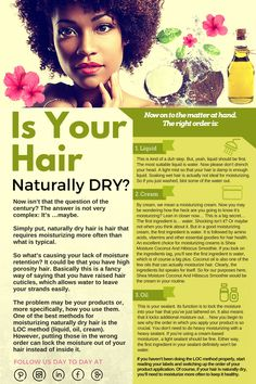 Dry hair information. Some people have naturally dry hair, here is more useful information. Natural Hair Care Tips, Natural Hair Journey, Natural Hair Styles, Natural Beauty, Diy Shampoo, Rides Front, Hair Porosity, Pelo Natural, Healthy Hair Tips