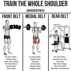 300 workout To build robust shoulders you need to target them from multiple angles to activate all three heads of the deltoid muscle. Dumbbells are the perfect tool for the job. While barb Dumbbell Workout Plan, Deltoid Workout, 300 Workout, Weight Training Workouts, Gym Workout Tips, Gym Training, Fun Workouts, Workout Board, Fitness Workouts