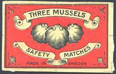 Three Mussels
